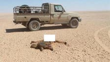 بالصور.. العثور على جثث متحللة لـ 12 مصريا بصحراء ليبيا