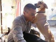 بالصور.. مصري يحول منزلا لمستشفى لعلاج الكلاب الضالة
