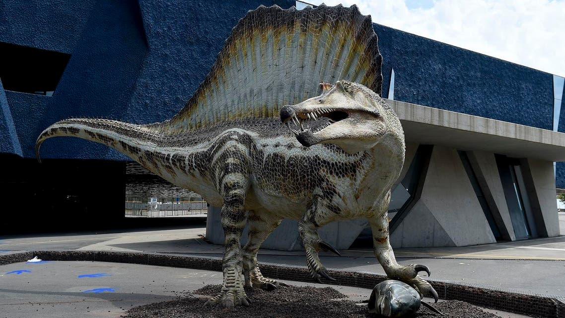 The egg-laying creatures may have turned to the snack when they were breeding and in need of extra protein. (AFP)