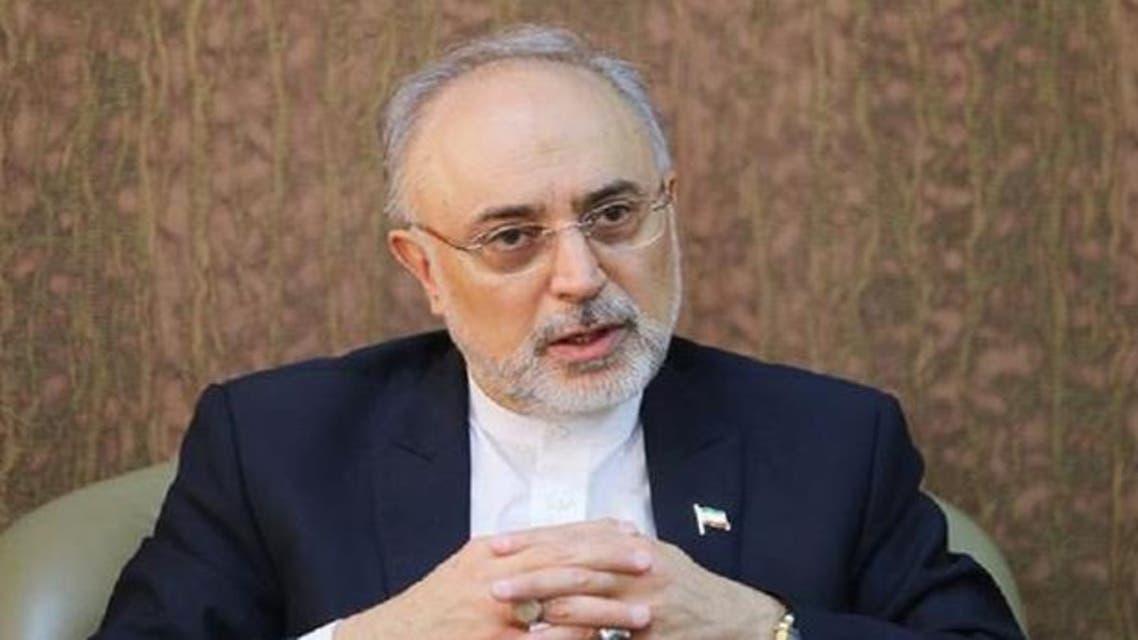 مساعد الرئيس الإيراني علي أكبر صالحي