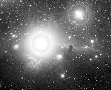 تصویر سحابی کله اسبی که توسط ویلیام هنری پیکرینگ، ستارهشناس آمریکایی در سال 1888 ثبت شد