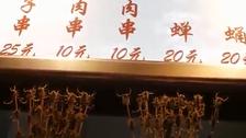بالفيديو.. مغربية تأكل العقارب والأفاعي
