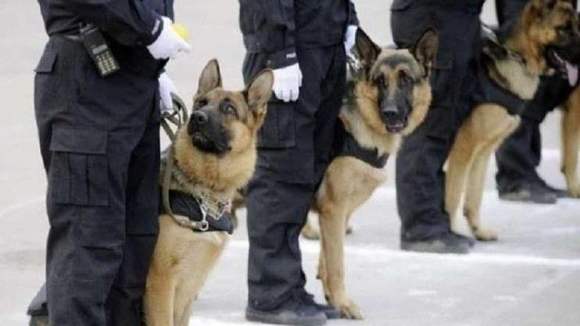 كلاب بوليسية