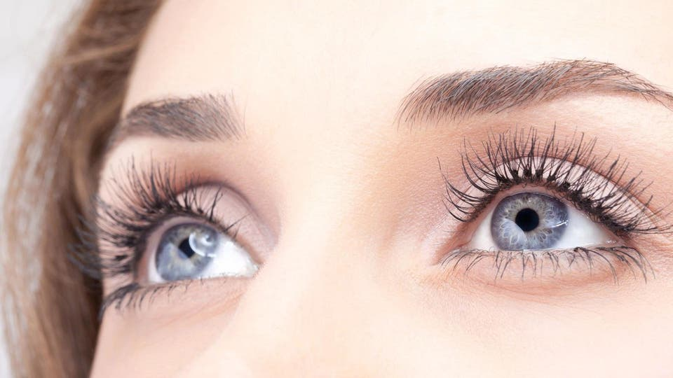 a6a6c10b6 هذه الأعشاب الـ8 مفيدة لعلاج العيون