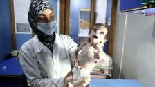 Shocking photos of Syrian baby who died of hunger under Assad regime siege