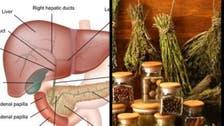 6 علاجات طبيعية للوقاية من أمراض الكبد