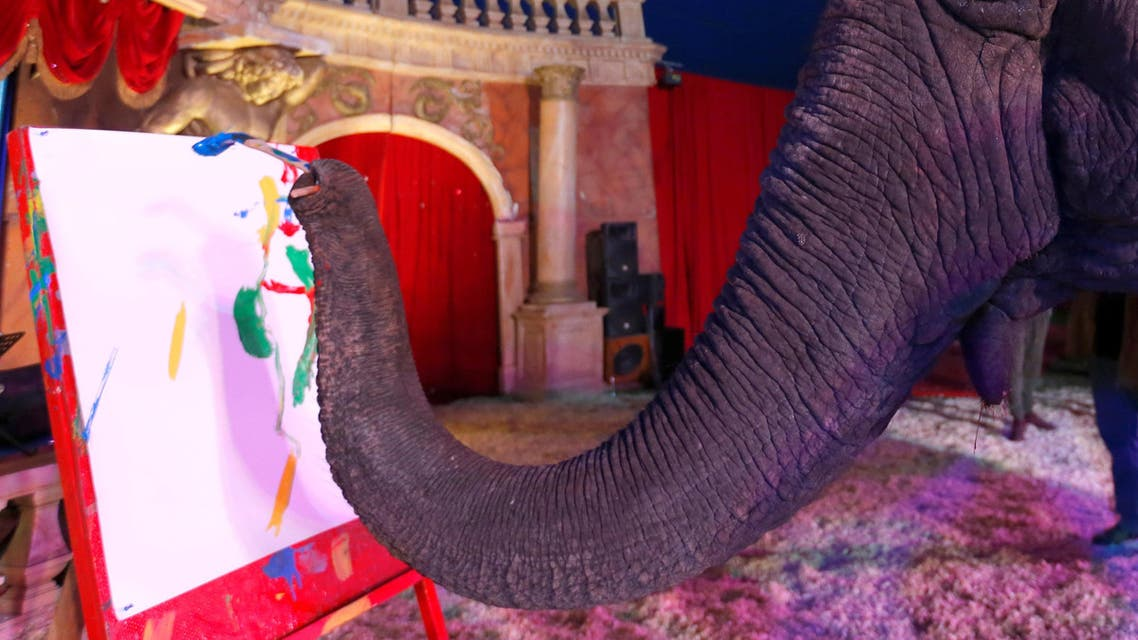 Sandra, a 42-year-old elephant, paints with her trunk in a Hungarian travelling circus of Florian Richter Circus in Budapest, Hungary November 2, 2017. Picture taken November 2, 2017. REUTERS/Laszlo Balogh TPX IMAGES OF THE DAY