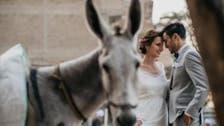 داماد مصری و عروس آلمانی با عکسهای عروسیشان واقعیت زندگی در قاهره را روایت کردند