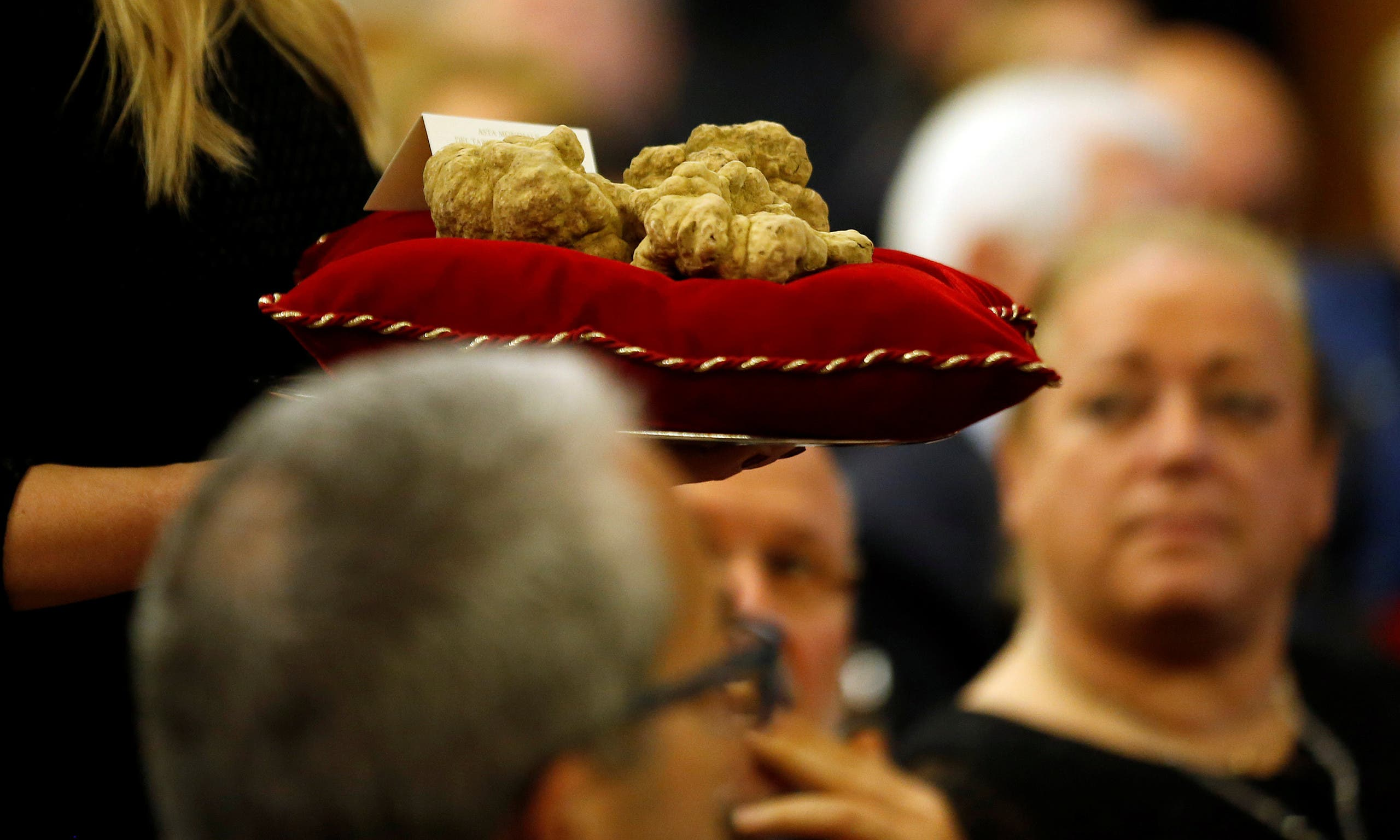 Hostess carries a set of truffles weighing 850 grams during the international auction for truffles at the Grinzane Castle in Grinzane Cavour near Alba, Italy, November 12, 2017. reuters