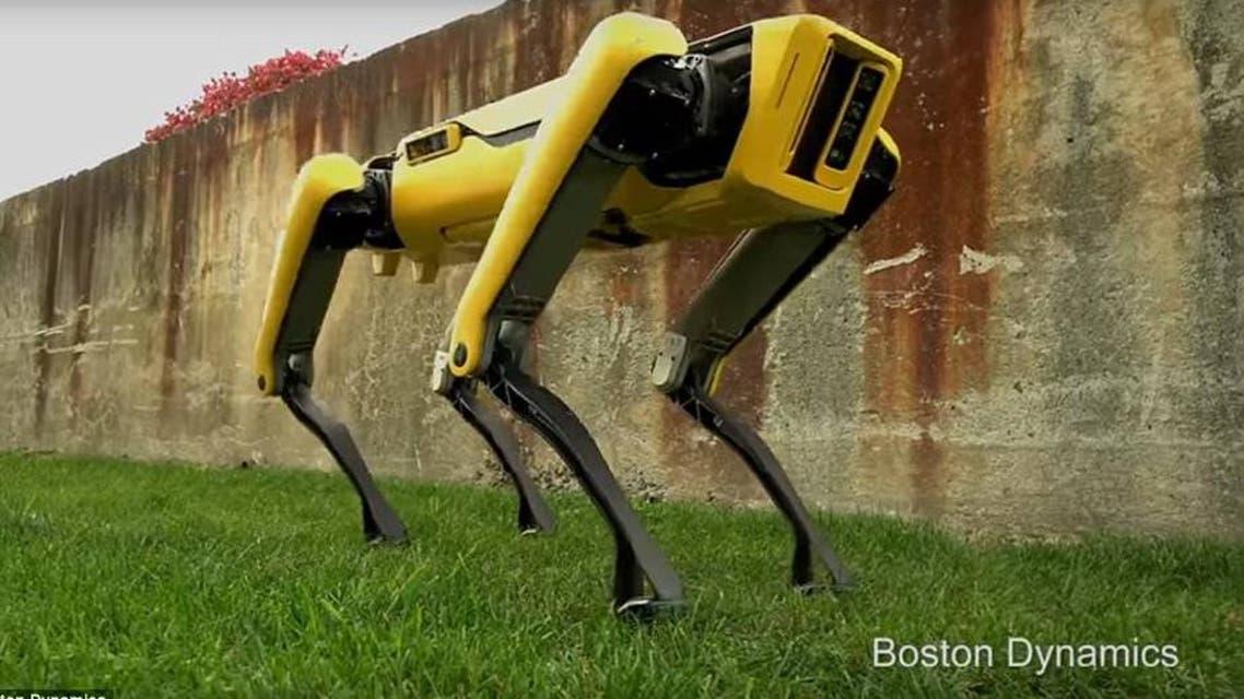 """النسخة الأحدث من """"الكلب الروبوت"""""""