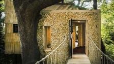 منزل خشبي داخل شجرة.. بين أفخم العقارات في بريطانيا