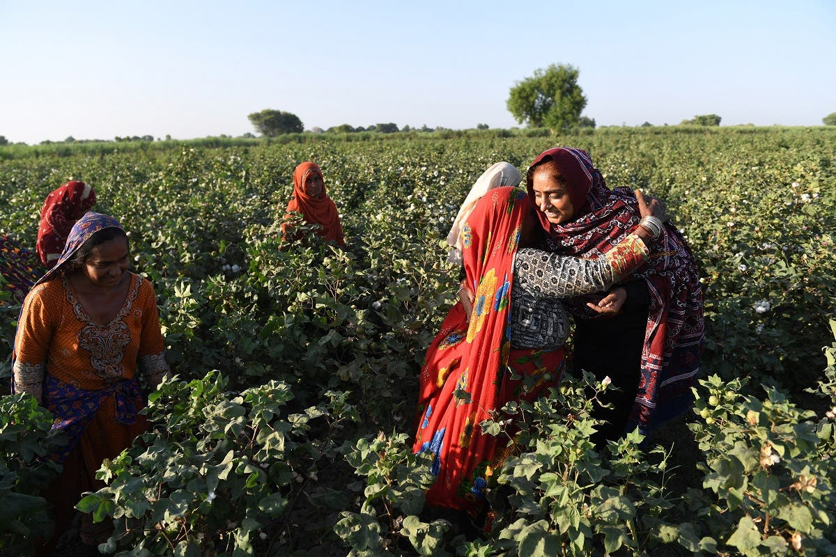 This photograph taken on September 27, 2017, shows Pakistani woman Mukhtiar Naz (R), known as Waderi Nazo Dharejo, meeting with her workers at her agriculture field in Qazi Ahmed in Sindh province. (AFP)