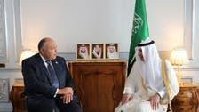 الجبير وشكري يبحثان قضايا المنطقة وأزمة قطر