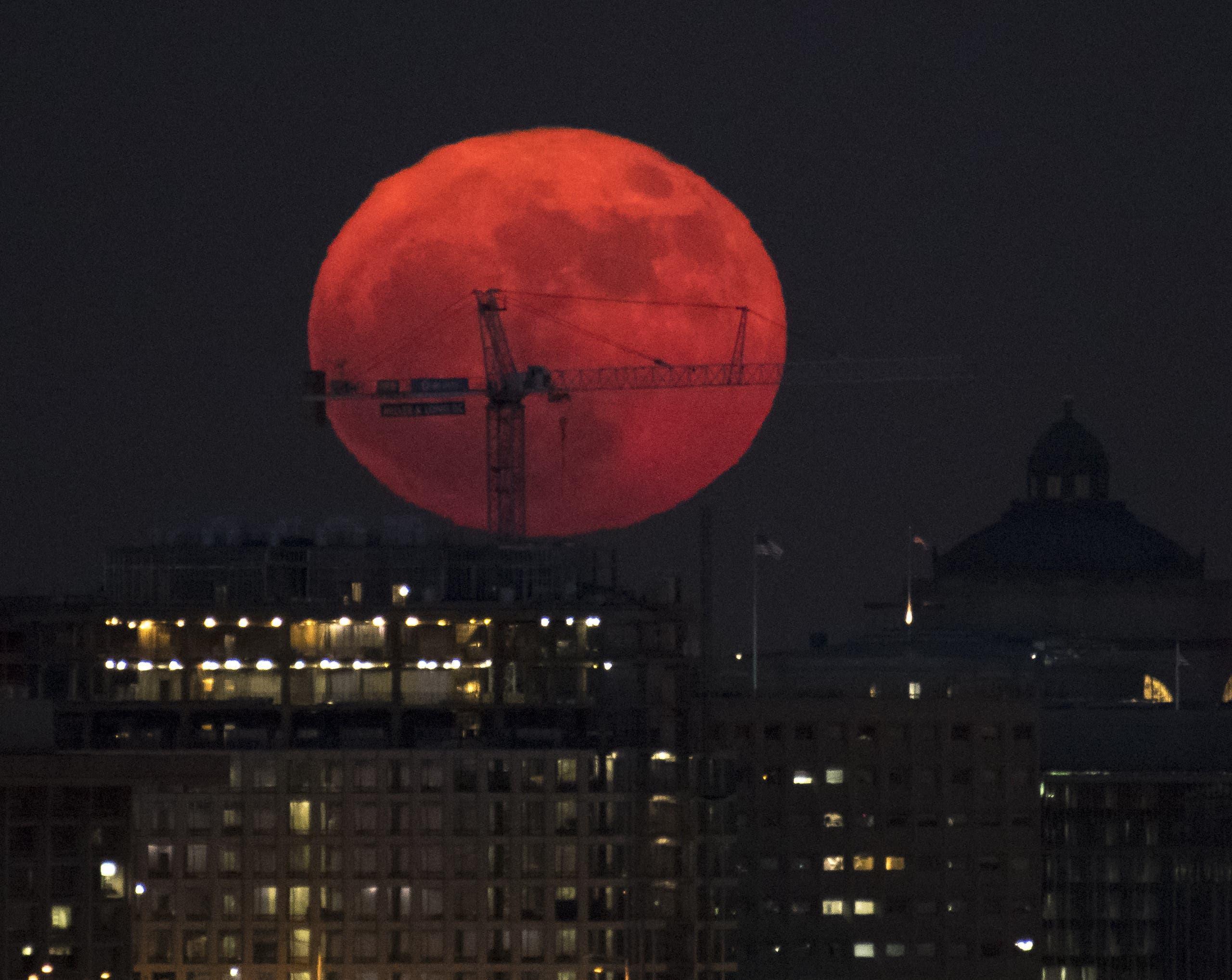 القمر في سماء واشنطن