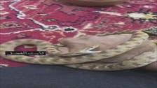 زہریلے سانپ کے دل میں چائے پینے کا شوق کیسے پروان چڑھا؟