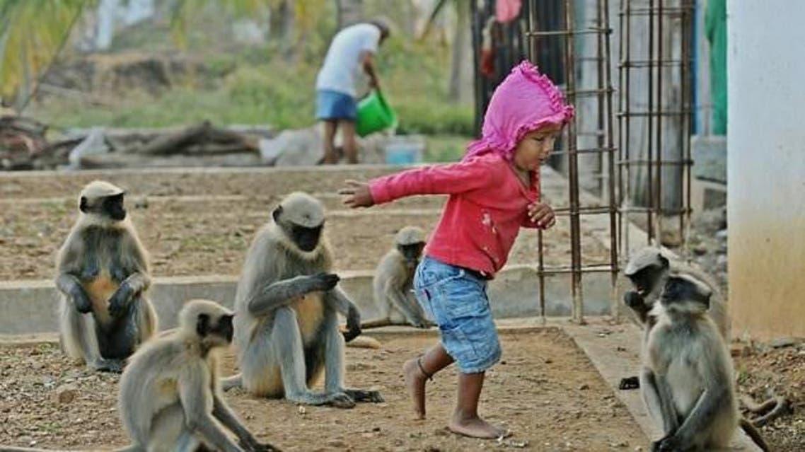 monkey toddler afp