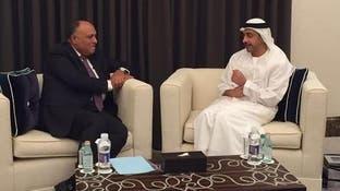 الإمارات: ندعم جهود مصر بالتوصل لحل سياسي لأزمة ليبيا