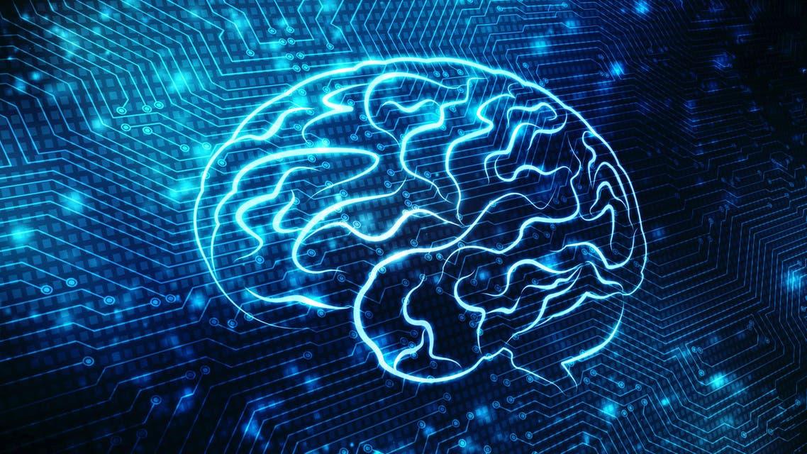 Brain (Shutterstock)