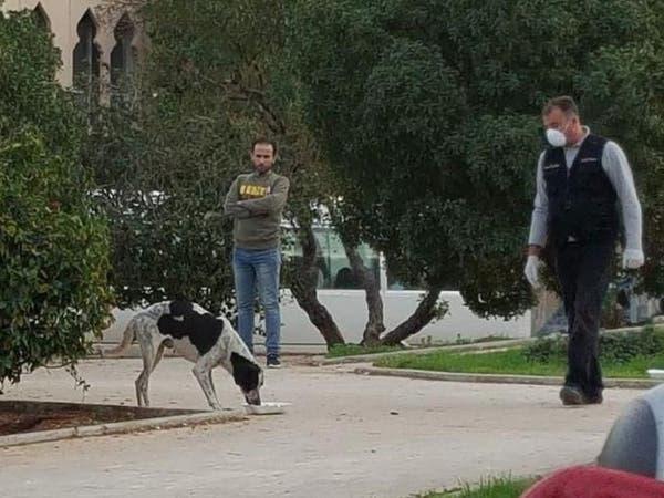 فيديوهات مروعة لكلاب تلفظ أنفاسها.. وغضب في لبنان