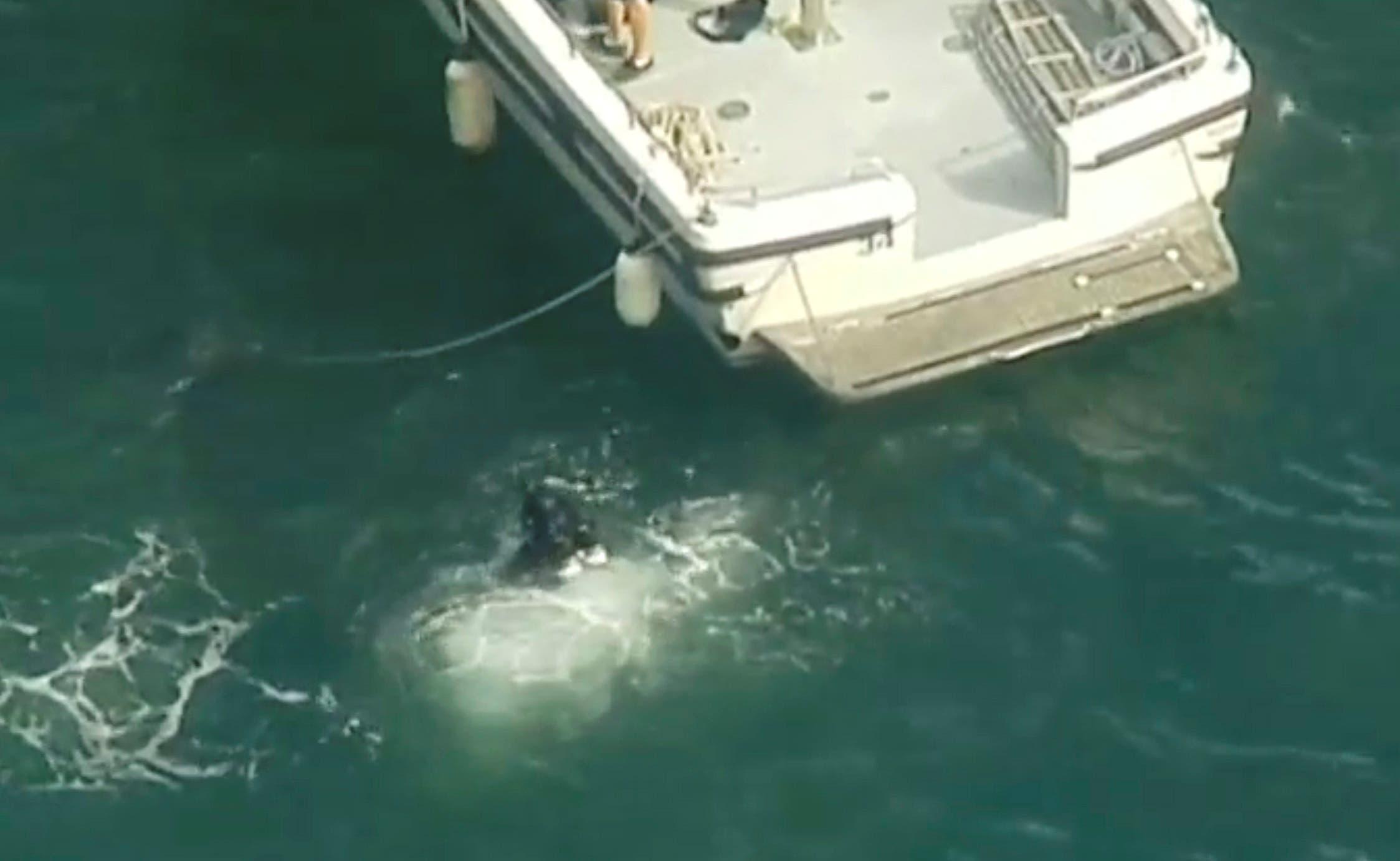 Sydney seaplane crash. (AP)