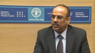 اليمن: عدن ستكون جاهزة لاستقبال البعثات ووكالات الأنباء