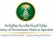 """السعودية تحظر استيراد بعض الطيور بسبب """"الانفلونزا"""""""
