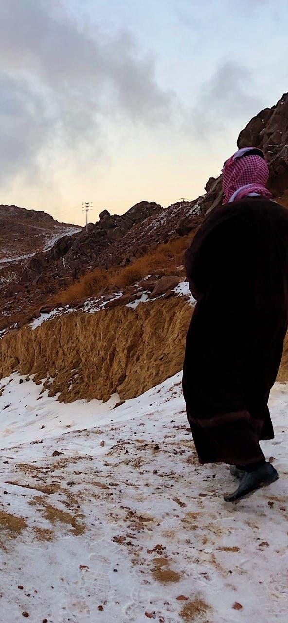 جبل اللوز أولى محطات الزائر الأبيض في السعودية