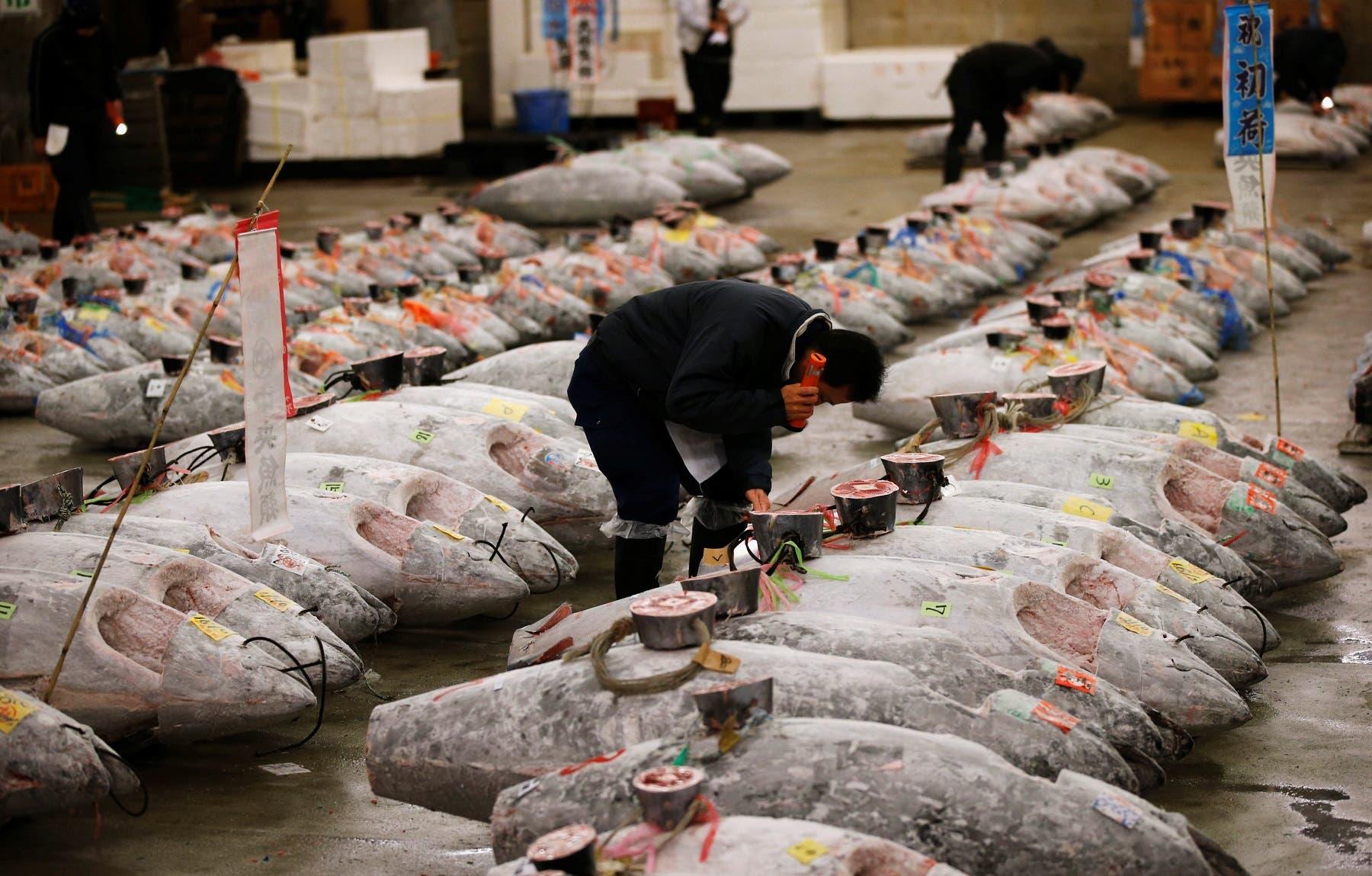 Tokyo fish market Reuters