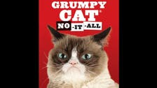 Grumpy Cat wins $710,000 payout in copyright lawsuit