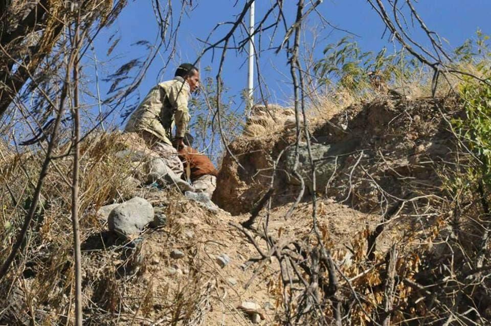الجيش اليمني في معارك شرق تعز