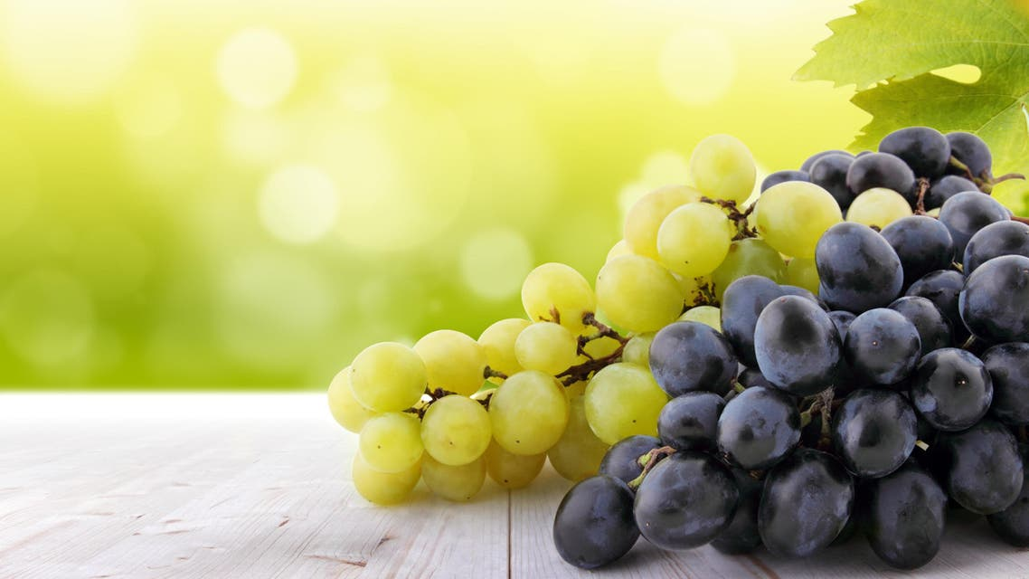 White and red grapes on table in vineyard - Stock image...