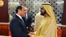 UAE and Egypt assert joint strategies to stop supply of weapons to terrorists