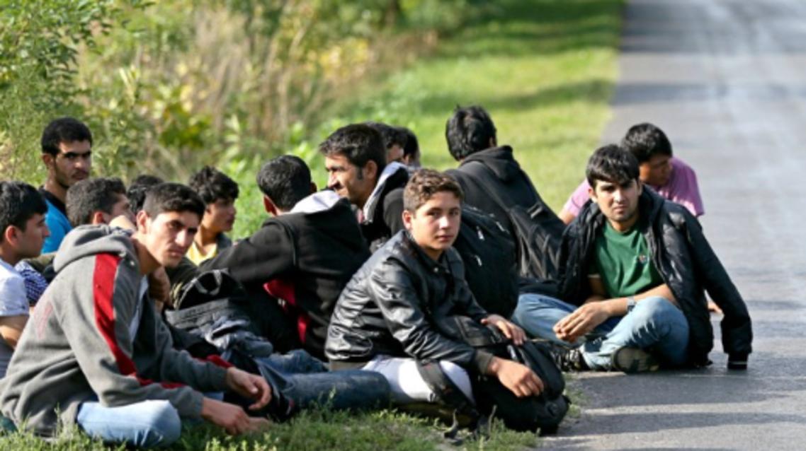 53 هزار مهاجر افغان به کشورشان برگشتند