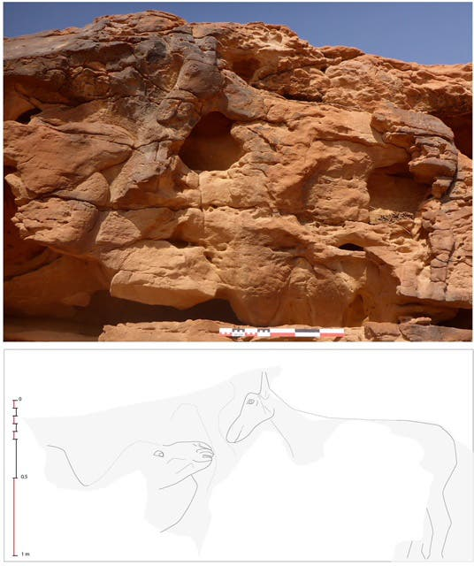 جمال منحوتة في صخور السعودية