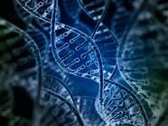 مفاجأة.. الجينات تظل نشطة بعد وفاة الإنسان