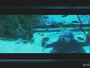 شاهد.. الأيادي الناعمة تمتد تحت الماء وتقود الغواصات