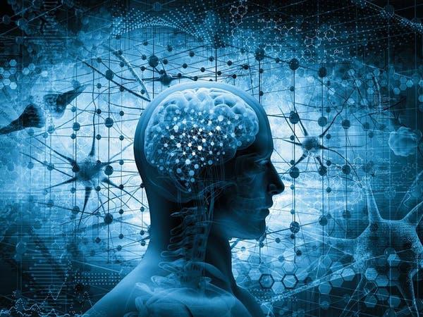 هل دماغنا يصاب بالشيخوخة بعد سن الـ25؟