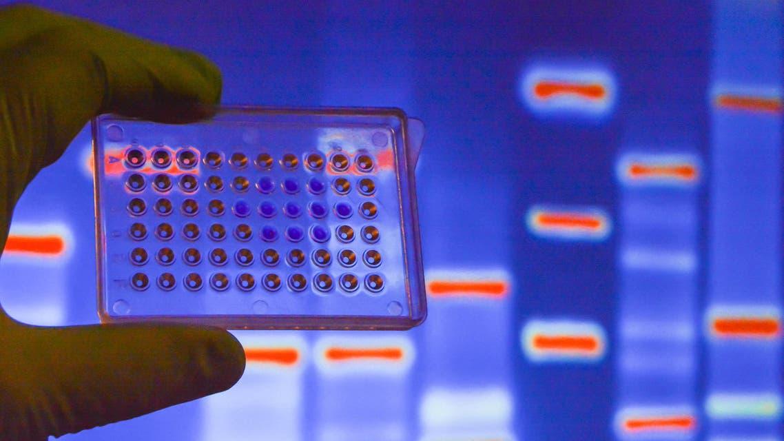 genetics science. (Shutterstock)