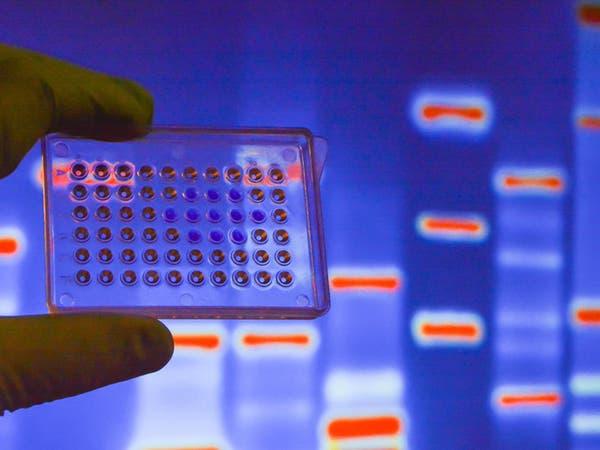 تشديد صيني على تجارب الجينات والأجنّة البشرية