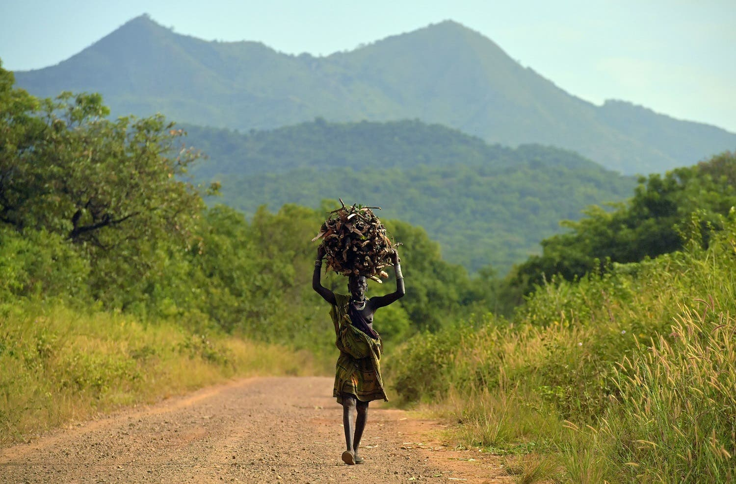 AFP A woman from the Suri tribe carries firewood on her head in Ethiopia's southern Omo Valley region, near Kibbish Ethiopia.