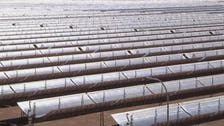 مصر تتجه لبناء مصنع ألواح الطاقة الشمسية بملياري دولار