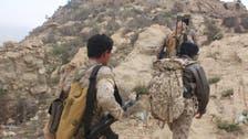 یمن: مغربی ساحل کے محاذ پر سرکاری فوج کا بھرپور حملہ اور کامیابیاں