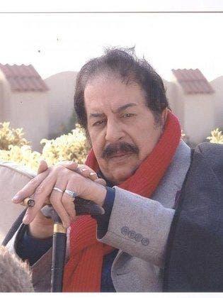 الفنان رضا الجمال