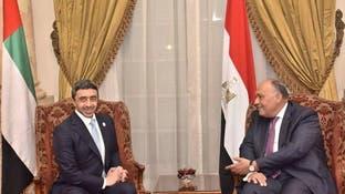 مصر والإمارات تؤكدان ضرورة الحل السياسي في ليبيا