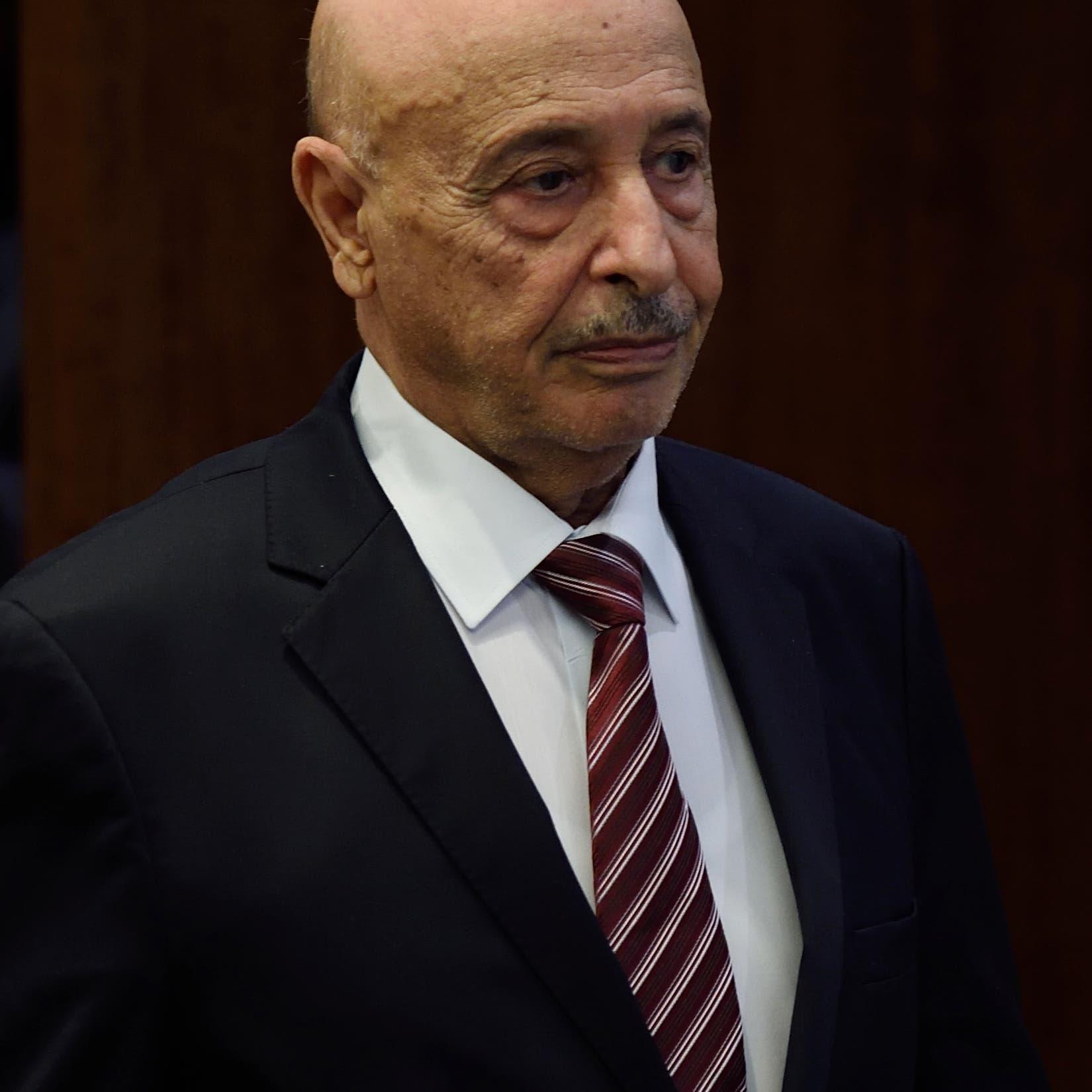 ليبيا.. اتهامات للإخوان وقطر وتركيا بعرقلة الانتخابات
