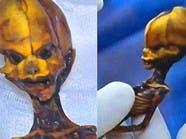 لغز كائن طوله 15 سنتيمترا وجدوا هيكله العظمي في الصحراء