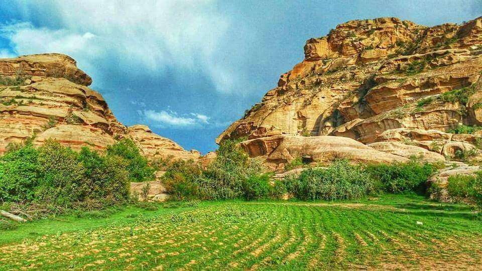 88e8bc6ae المصور علي الريثي وثق جماليات قرية الشامية بصورة جسدت روعة الطبيعة فيها،  وفي حديثه لـ