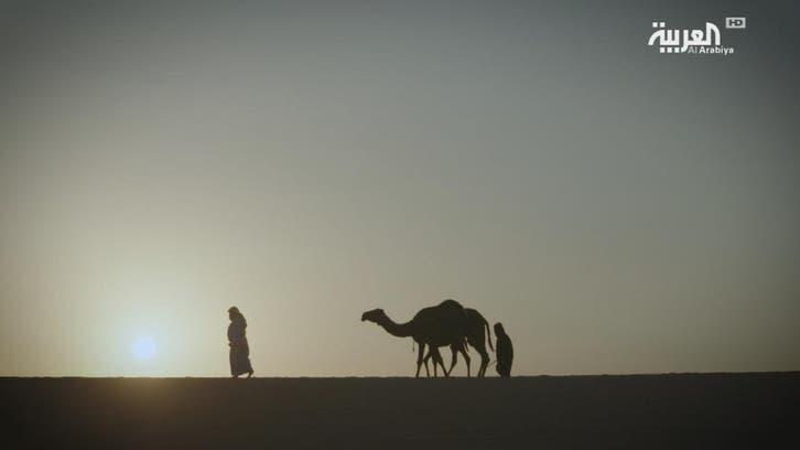 #قامات_القصيد: خلف أبو زويد