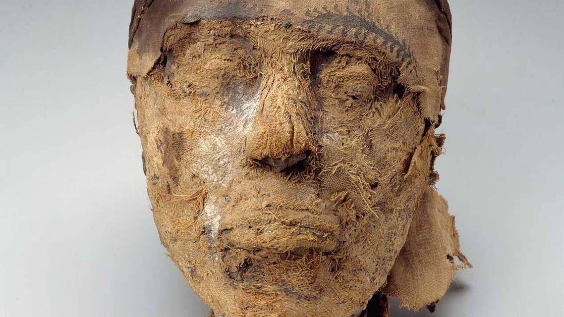 egypt mummy head. ( Credit Museum of Fine Arts, Boston)