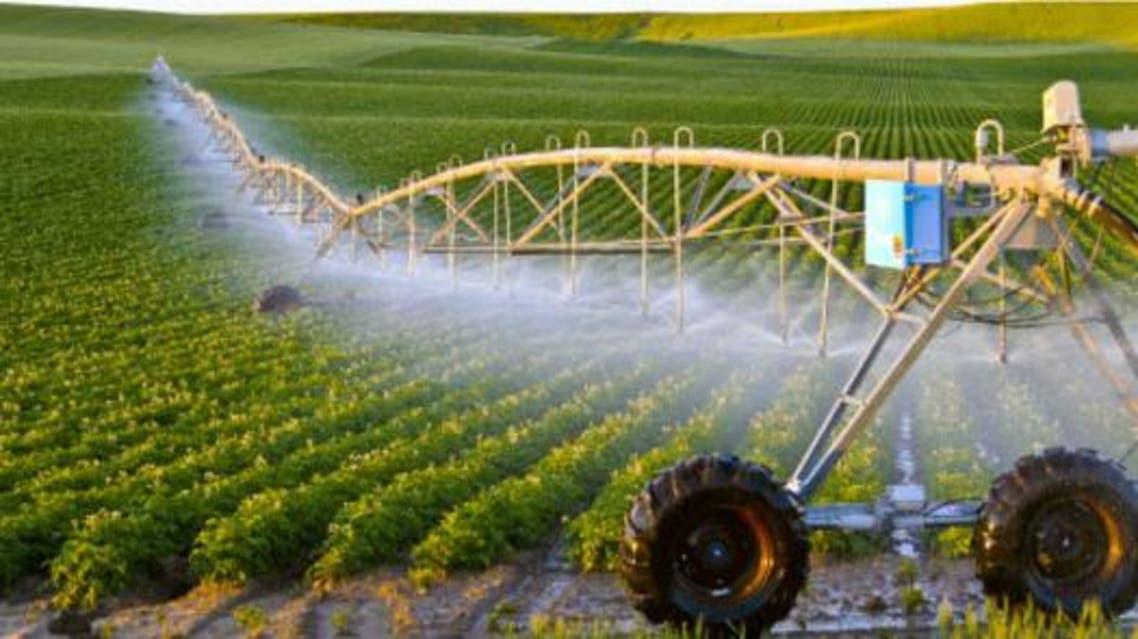 سه پروژه بزرگ زراعتی به ارزش میلیونها افغانی در هرات افتتاح شد